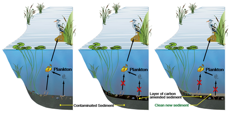 ES&T Features In Situ Remediation graphic